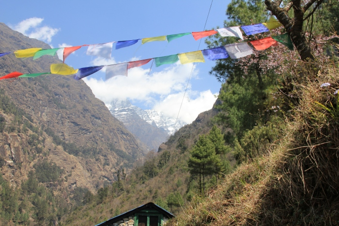 Welcome to the Khumbu